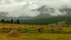 дни altai продолжают лето гор Красивейший ландшафт гористой местности Россия Сибирь Timelapse сток-видео