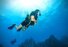 Дно моря водолаза акваланга молодой женщины исследуя Стоковая Фотография