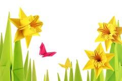 Дно narcissus весны Origami стоковые фотографии rf