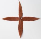 добавочный символ Стоковое Изображение RF