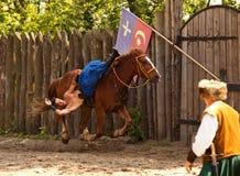 Добиваться на скакать лошади 1 Стоковые Изображения