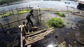 Добровольная чистка женщины загрязняла озеро погани и твердых частиц видеоматериал