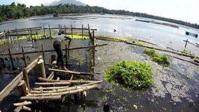 Добровольная чистка женщины загрязняла озеро погани и твердых частиц сток-видео