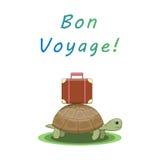Доброго пути Черепаха идет на отключение с чемоданом Стоковые Фото