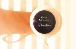 Доброе утро, солнечность Стоковые Фотографии RF
