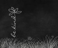 Добросердечный цветок маргаритки текста стоковые фото