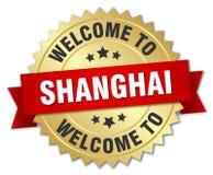 добро пожаловать к значку Шанхая Стоковые Изображения