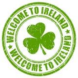 Добро пожаловать к печати вектора Ирландии иллюстрация вектора