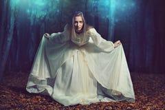 Добро пожаловать к fairy земле Стоковое Фото