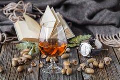Добрый вечер с книгой и стекло спирта выпивают Стоковое Фото