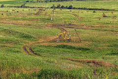 Добыча нефти и земледелие Стоковые Изображения RF