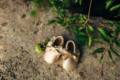 Добычи младенца и плодоовощ гранатового дерева Стоковые Фото
