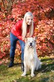 Довольно белокурая девушка идя с собакой в концепции животного леса Стоковые Изображения RF