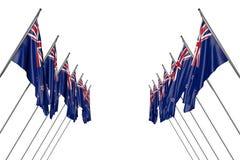 Довольно много флагов Новой Зеландии вися дальше в угловых опорах от левой стороны и правильных сторон изолированных на бело- люб иллюстрация штока