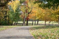 Довольно прогулка снаружи, наслаждающся красивым цветом осени Стоковая Фотография RF