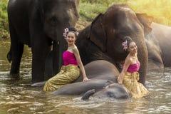 Довольно тайские девушки в традиционном тайском платье с слонами Стоковые Изображения RF