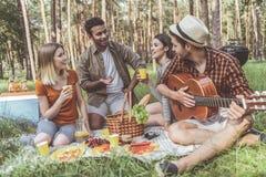 Довольные друзья имея диалог на пикнике Стоковое Изображение