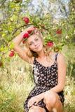 Довольно белокурая фея яблока под ветвью зрелых красных плодоовощей Стоковое Фото