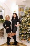 Довольно женский представлять с улыбкой на стороне стоя рядом с новой дой Стоковая Фотография