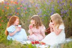 Довольно молодые подруги на outdoors участвовать в поле Стоковое фото RF