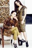 Довольно стильная женщина в платье моды с печатью леопарда совместно в роскошном богатом интерьере комнаты, концепции людей образ Стоковое Фото