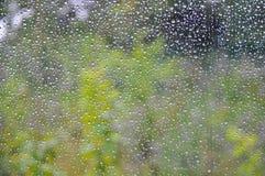 Дождевая капля на окне с зеленой предпосылкой стоковые фотографии rf