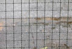 Дождевая капля на стальной сети с космосом экземпляра Стоковые Фото