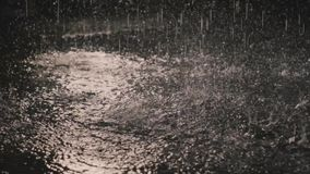 Дождевые капли в темноте в свете 2 фонарика видеоматериал