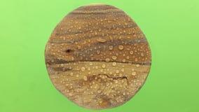 Дождевые капли падая на планку старого круга деревянную изолировано сток-видео