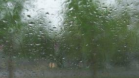 Дождливая и ветреная погода во время урагана и оклика - взгляда от теплого автомобиля через окно лобового стекла с падениями дожд сток-видео