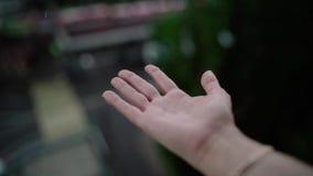 Дождливая погода, падения дождя понижаясь на руку женщины Дождь падает на руку человека видеоматериал