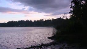 Дождь лить вниз над озером видеоматериал