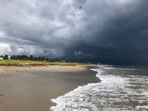 Дождь Майкл урагана на пляже стоковая фотография rf