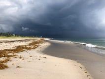 Дождь Майкл урагана на пляже стоковые изображения
