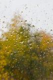 Дождь осени Стоковая Фотография