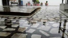 Дождь падая в сезон дождей сток-видео