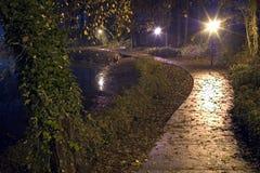 дождь парка ночи майны падения стоковые фото