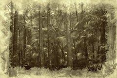 дождь пущи бесплатная иллюстрация