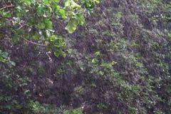 Дождь упал тяжело весь день потому что туда ` s шторм стоковые изображения rf