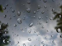 Дождевая капля на окне Стоковые Фото
