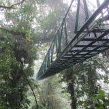 Дождевой лес Monteverde Коста-Рика национального парка моста Стоковое фото RF