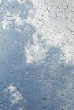 Дождевые капли или капельки воды стоковые фото