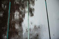 Дождевые капли на древесине Стоковое Изображение RF