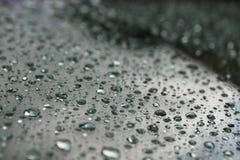 Дождевые капли Стоковое фото RF