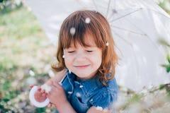 Дождь лепестков Стоковые Фотографии RF