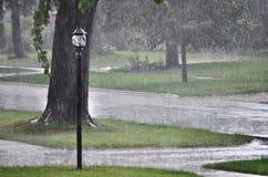 Дождь лета Стоковые Фото