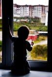 Дождь лета Стоковые Фотографии RF