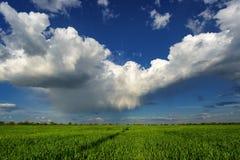 Дождь и облака над полем Стоковые Изображения