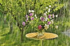 Дождь и цветки лета стоковая фотография rf