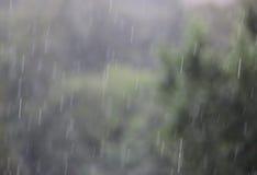 Дождь на черноте Стоковые Фото